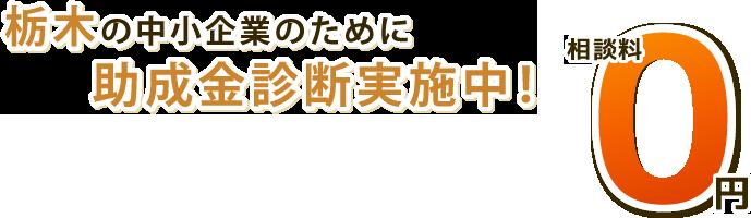 栃木の中小企業のために助成金診断実施中!